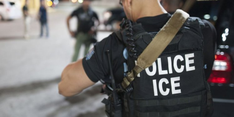 Image result for us police ice 750