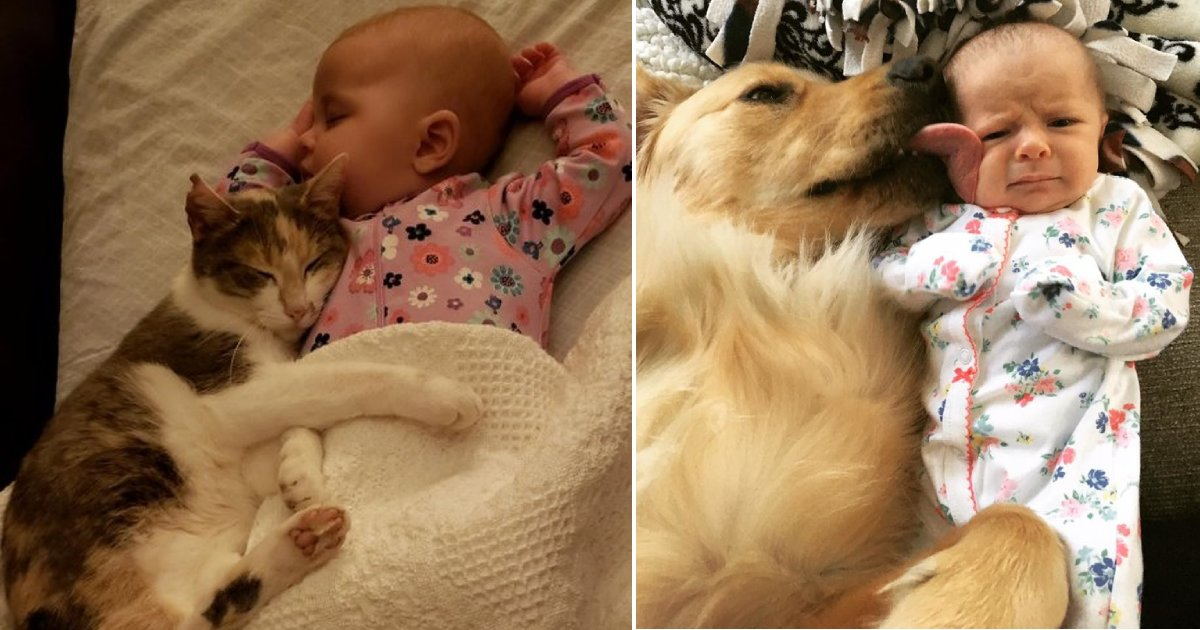 kids and pets 1.png?resize=1200,630 - 15 Adorable Photos Showing That All Children Should Get A Pet