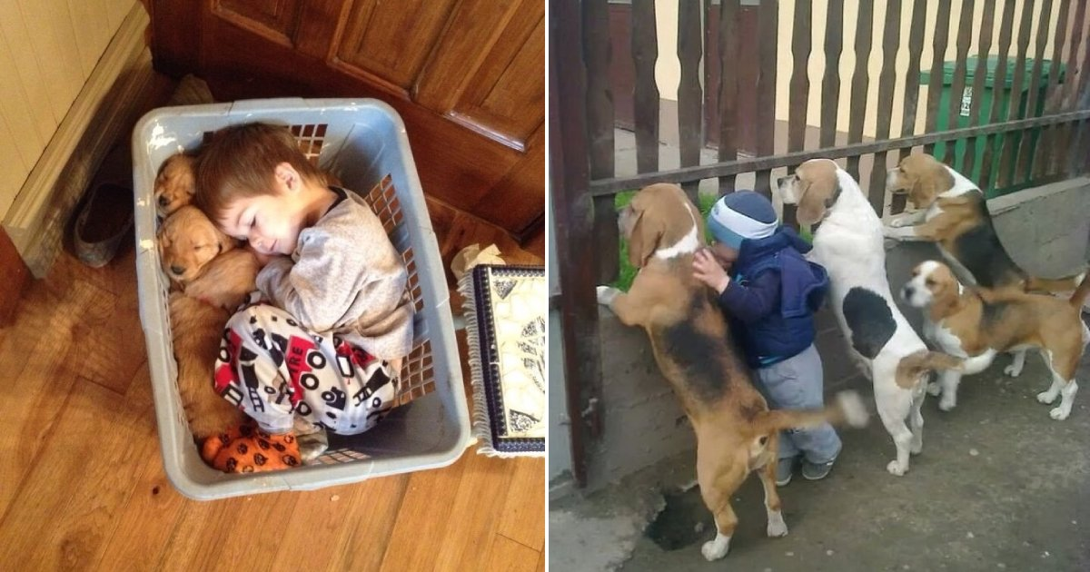 kids and pets.png?resize=1200,630 - 15 Photos Showing Why Every Kid Should Own A Pet