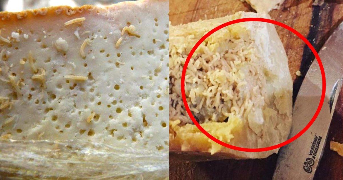 maggotcheeze ttl.jpg?resize=1200,630 - 【衝撃】チーズの研究者が絶対に何が何でも食べたくないチーズが判明…マジか…