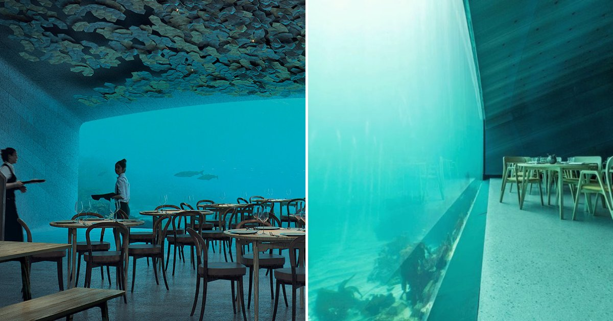 restaurant6.png?resize=412,232 - Underwater Restaurant Has Been Completed And It Looks Out Of This World