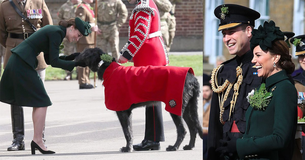 the duke and duchess of cambridge reunited with their furry friend domhnall at traditional irish guards parade.jpg?resize=1200,630 - The Duke And Duchess Of Cambridge Reunited With Their Furry Friend Domhnall At Traditional Irish Guards Parade