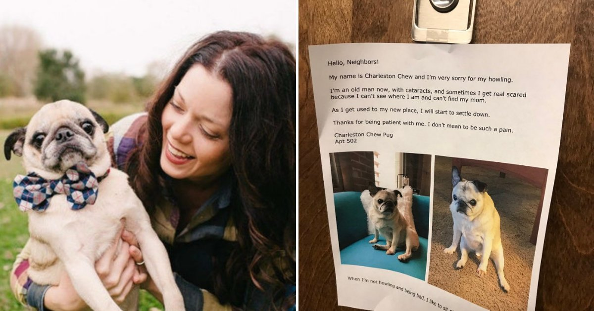 untitled design 23 1.png?resize=1200,630 - Owner Posts Touching Note On Her Door To Apologize For Her Dog's Howling