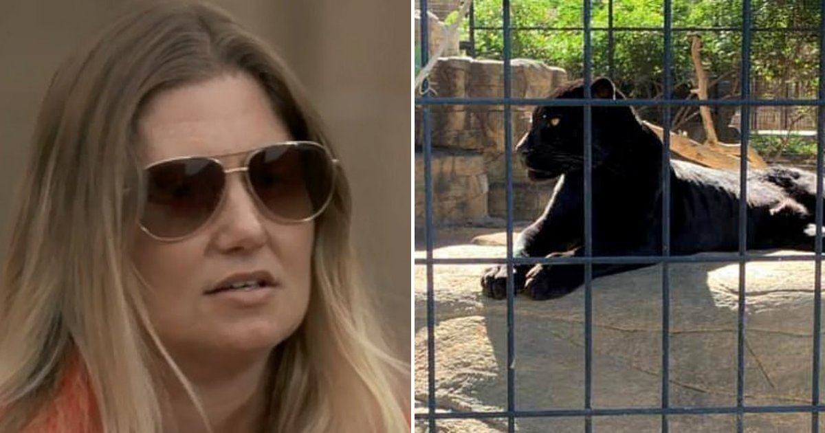 untitled design 49.png?resize=1200,630 - Woman Who Got Attacked By Jaguar After Crossing Protective Barrier Blames The Zoo For The Attack