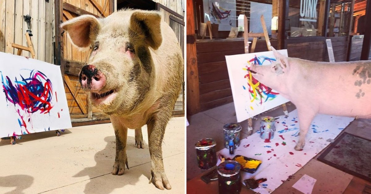 untitled design 58.png?resize=1200,630 - Pigcasso The Rescue Pig Loves Painting And Her Works Already Earned Her $150,000