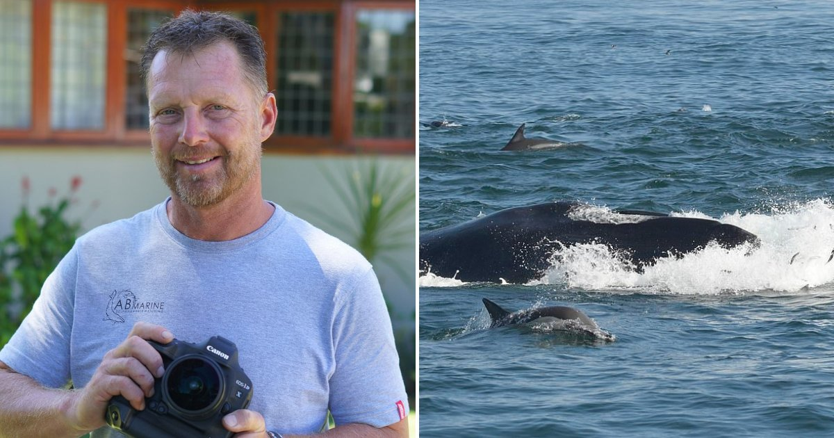 whale3.png?resize=412,232 - 51-Year-Old Man Who Was Swallowed Whole By Enormous Whale Lives To Tell The Tale