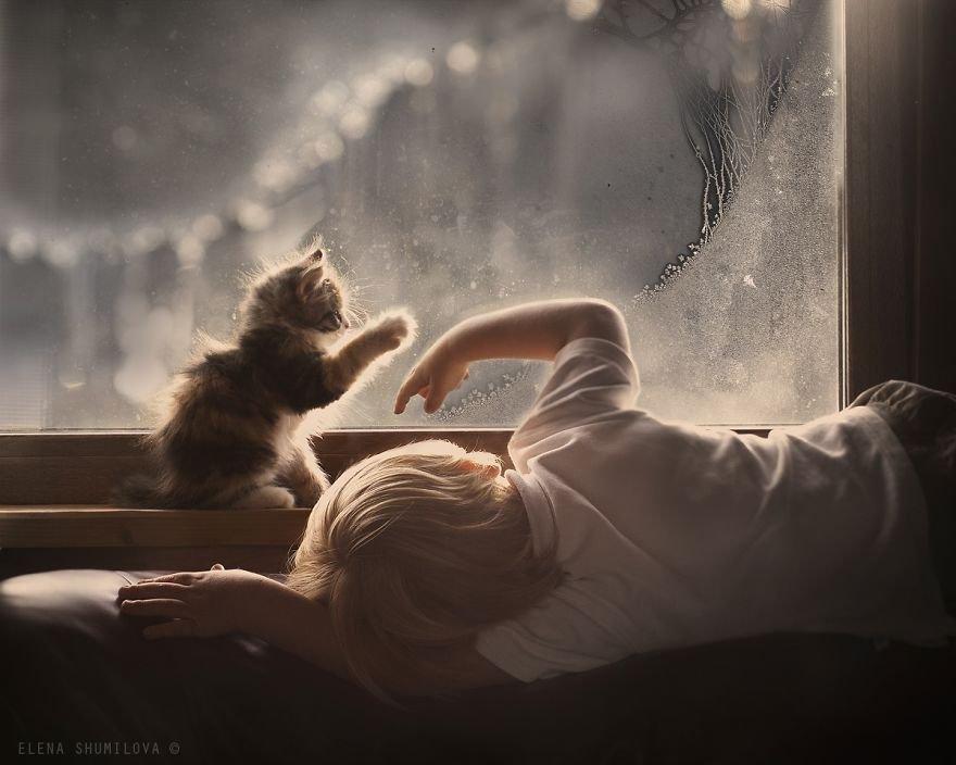 criancas-brincando-gatos-1