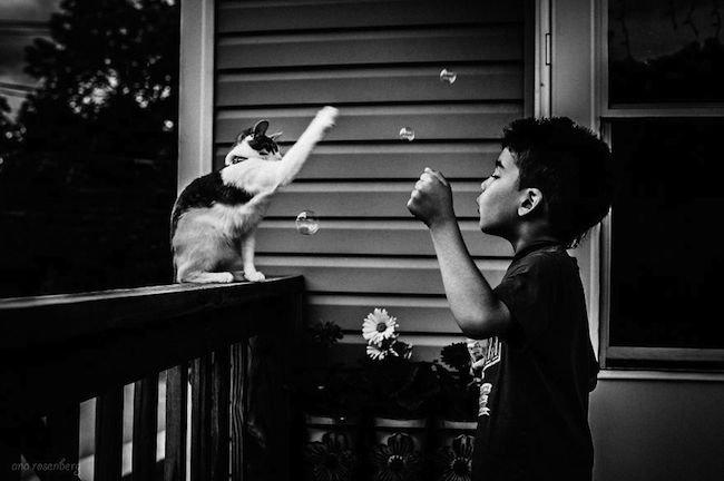 criancas-brincando-gatos-12