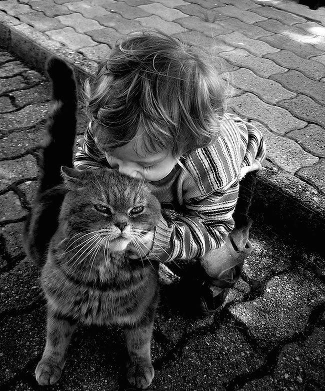 criancas-brincando-gatos-13