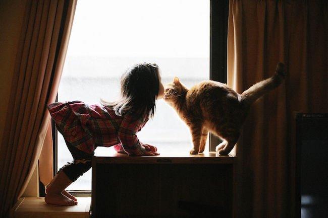 criancas-brincando-gatos-14