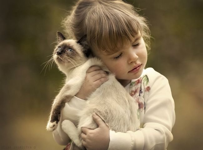 criancas-brincando-gatos-5