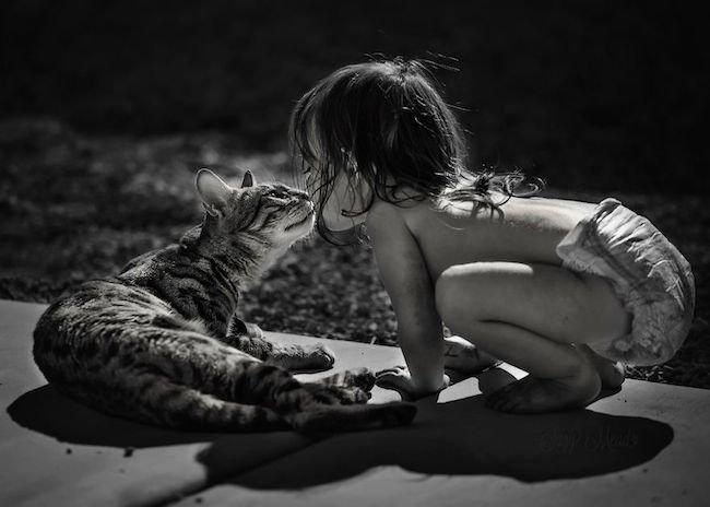 criancas-brincando-gatos-6