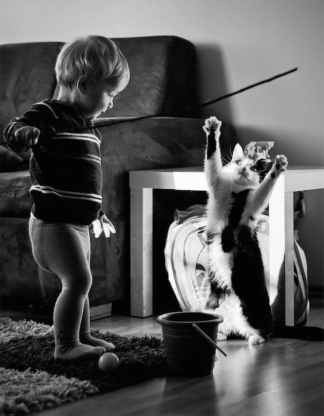 criancas-brincando-gatos-9