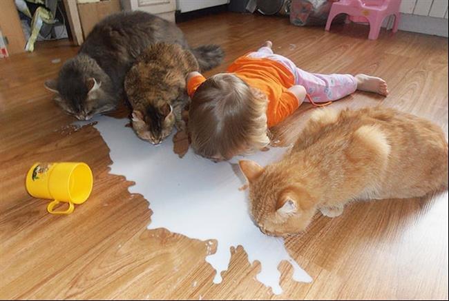 crianças-e-animais-1