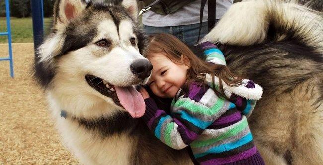 20717910 22 1520768162 650 25b3988b18 1521100175 e1554788477813.jpg?resize=412,232 - 30 Examples That Kids Plus Pets Equals Cuteness Squared