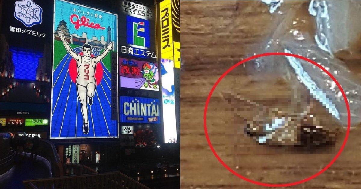 39.png?resize=412,232 - 모두를 경악시킨 오사카에서 겪은 신종 '혐한' 사건'