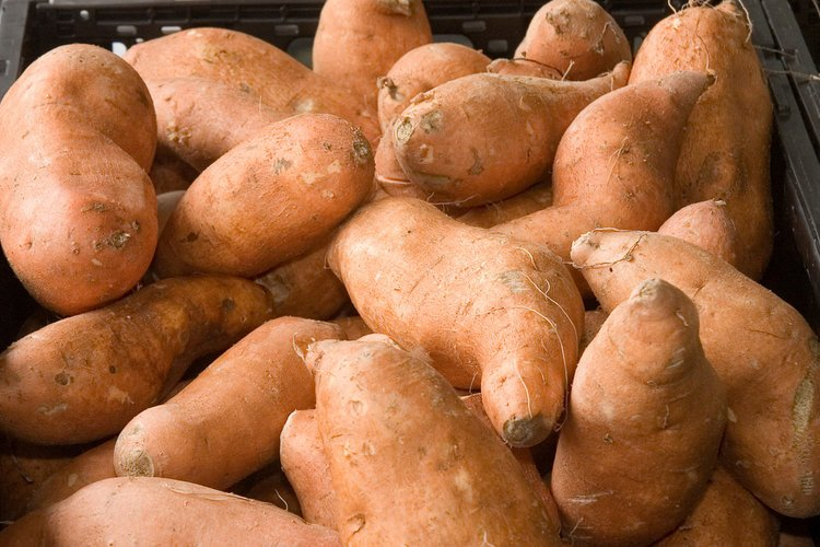 Image result for Health Benefits of Sweet Potatoes 750