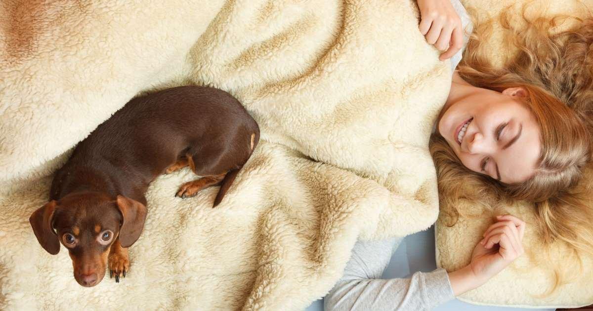 a 16.jpg?resize=1200,630 - Women Sleep Better With Dogs Than Men
