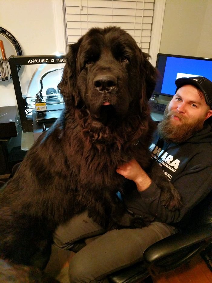 A Bit Too Big For The Lap