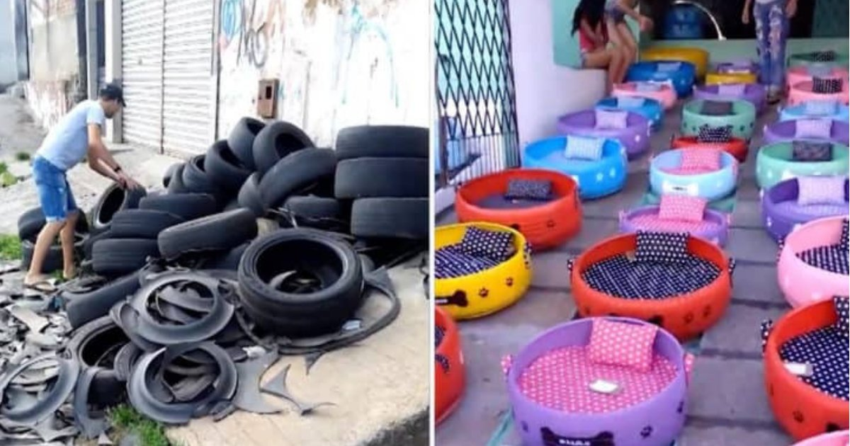 b4.png?resize=1200,630 - This Artist Used Old Tires To Build Classy Pet Beds For Stray Animals