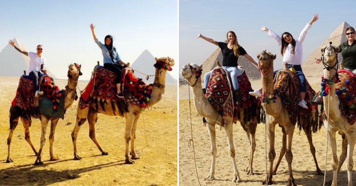 camels.png?resize=300,169 - Horreur cachée derrière les balades à dos de chameaux pour touristes