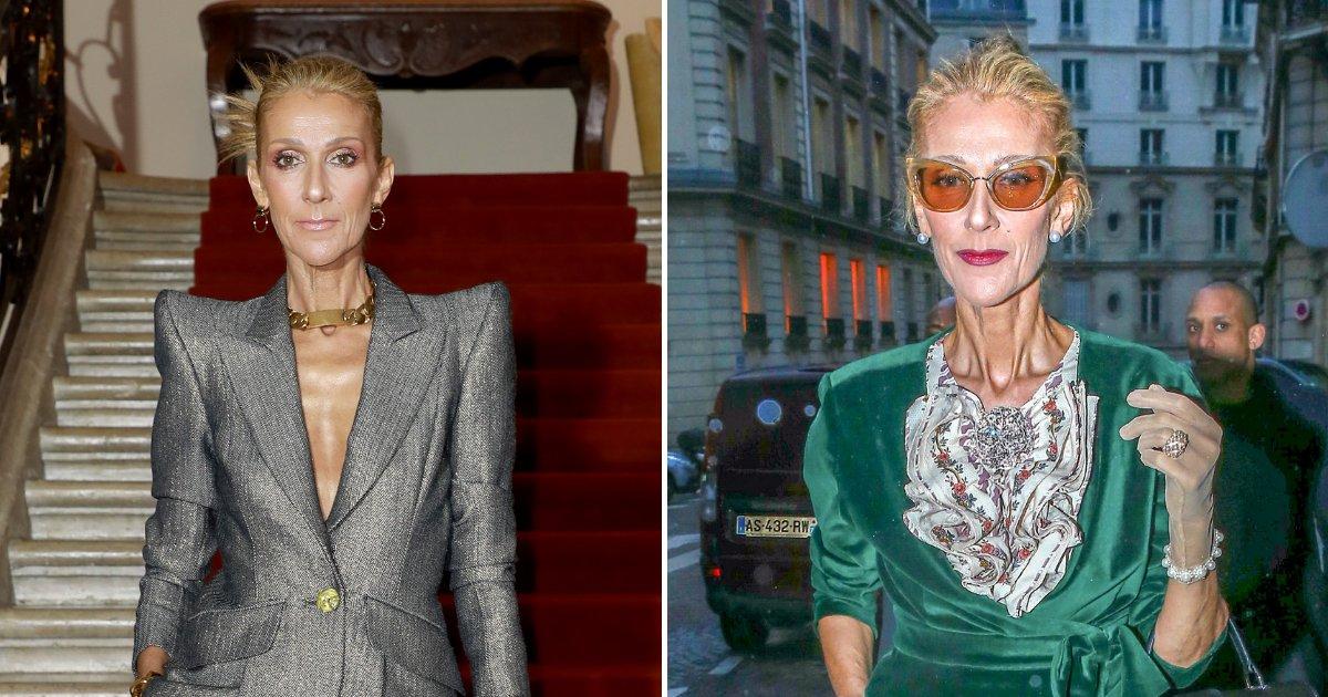 celine5.png?resize=732,290 - Celine Dion Slams Criticisms And Body-Shamers Concerned Over Her Slimmer Appearance
