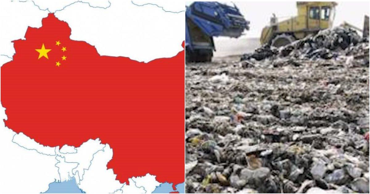 collage 6.png?resize=1200,630 - 14억명 중국인들이 '음식물 쓰레기'를 처리하는 충격적이고 '엽기'적인 방법 (영상)