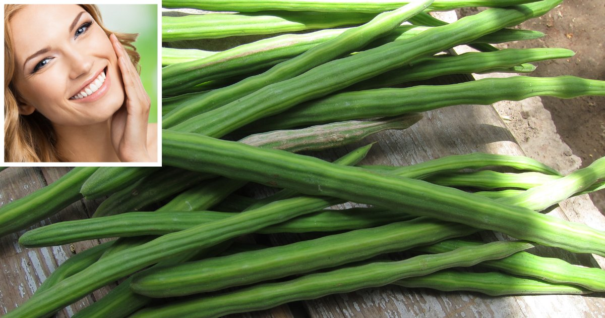 d2 7.png?resize=1200,630 - Know How Eating Dozens of Drumsticks or Moringa Pods is HIGHLY BENEFICIAL