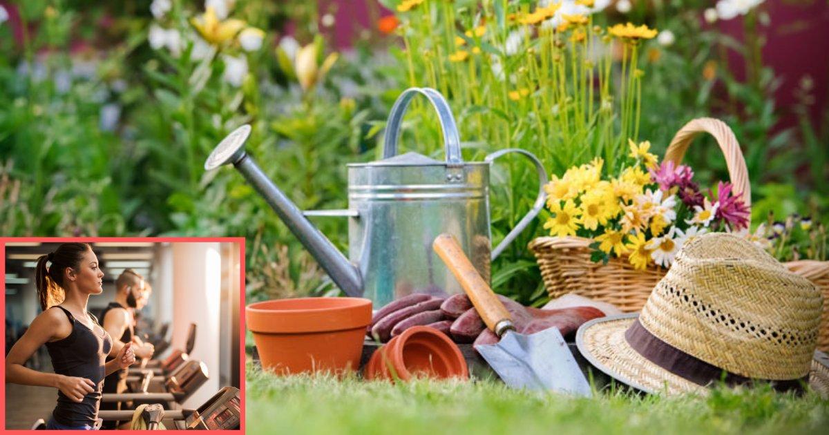 d3 9.png?resize=412,232 - Une nouvelle étude affirme que le jardinage peut être aussi sain que d'aller à la salle de gym