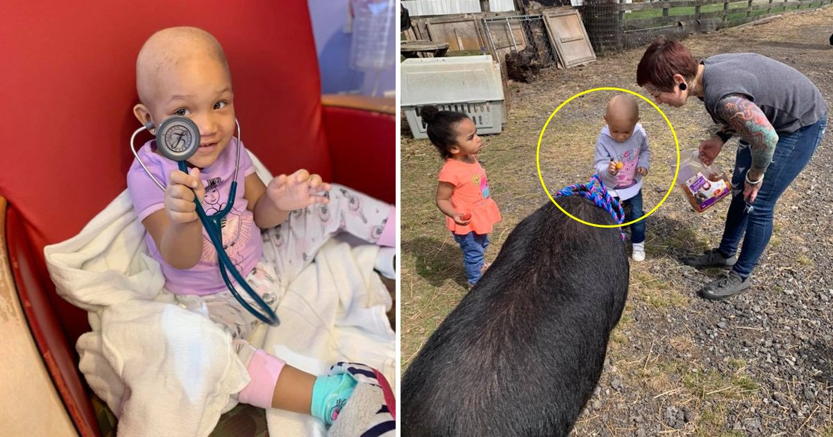 dfdfd.jpg?resize=1200,630 - The Thrilling Story of a 2-years-old Cancer Patient Who Went for a Trip to Meet the Animal Closest to Her Heart