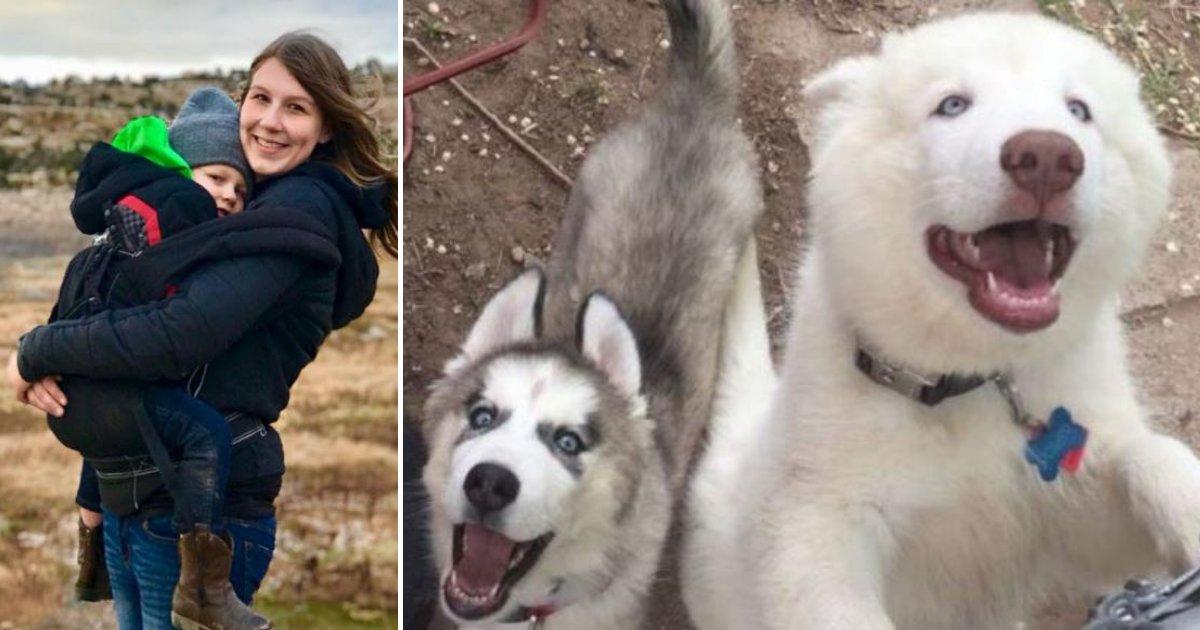 dog2.png?resize=412,232 - Une mère parle enfin après l'attaque de son petit garçon par deux chiens agressifs
