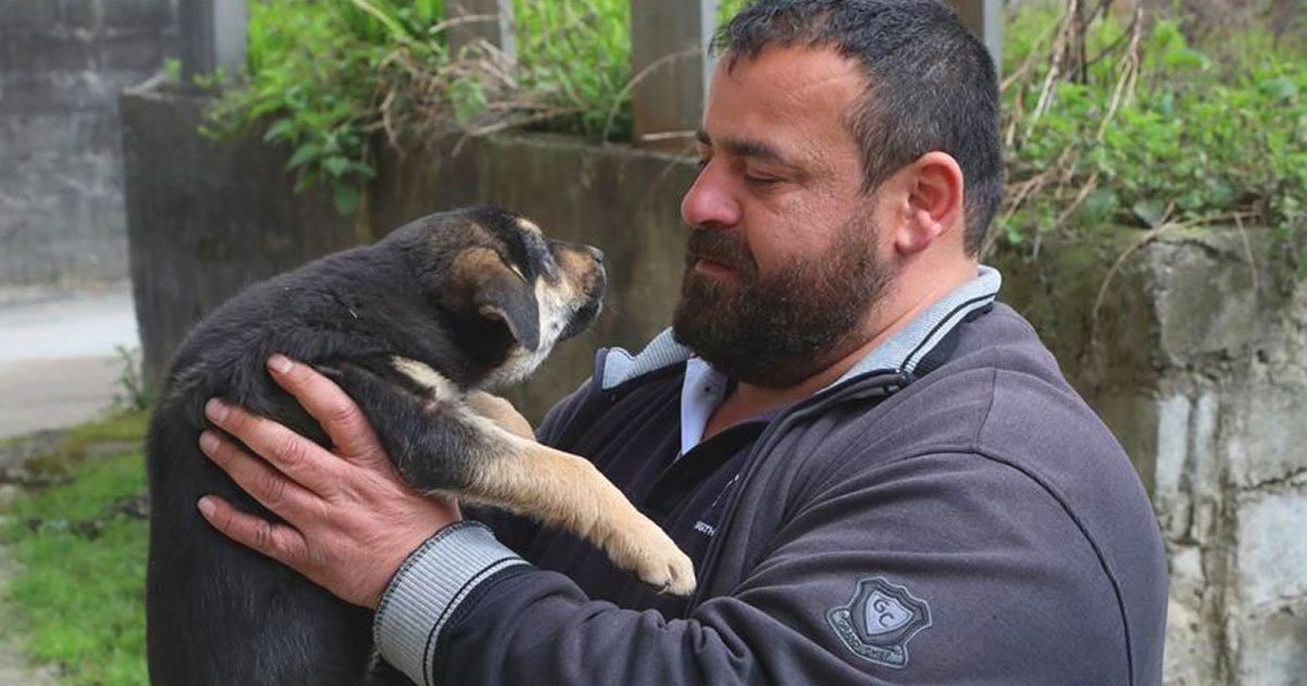 man saves dog.jpg?resize=412,232 - Man Saved A Choking Stray Puppy After A Piece Of Food Got Stuck In Its Throat
