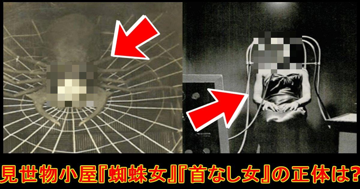 misemono.jpg?resize=300,169 - 見世物小屋で人気を博した『首無し女』と『蜘蛛女』の正体は!?