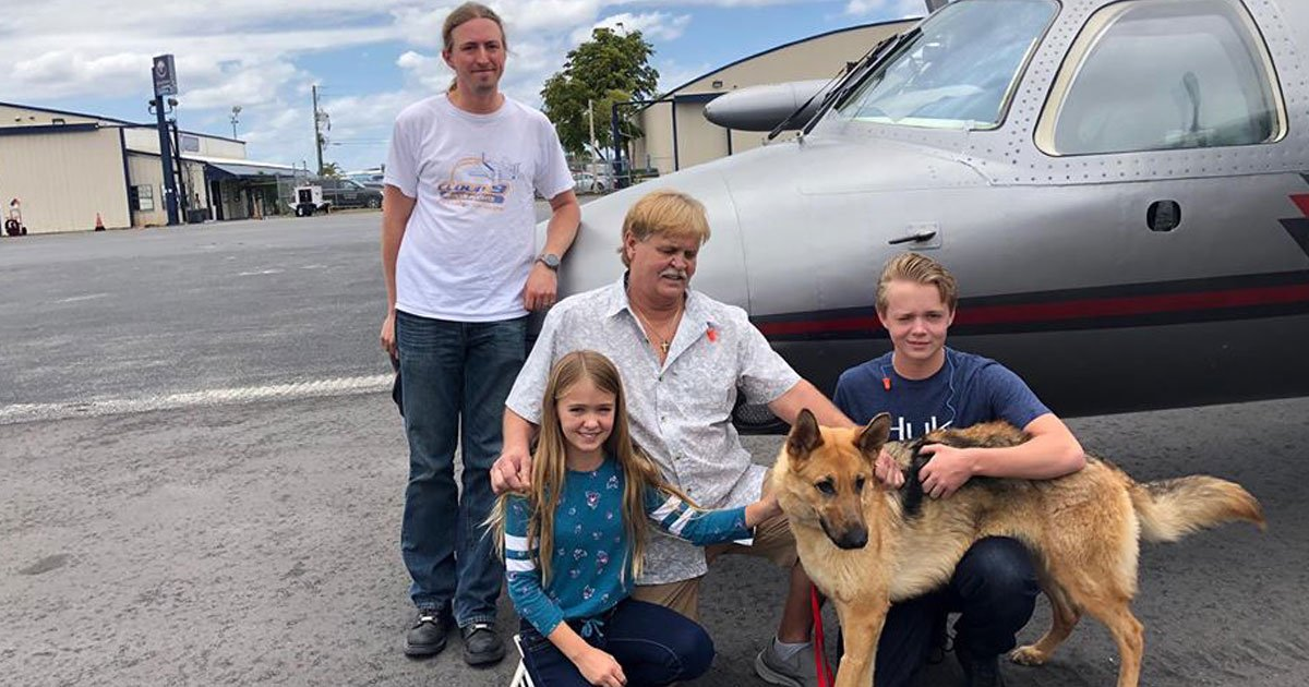 missing dog found.jpg?resize=1200,630 - German Shepherd - Who Went Missing When He Was Just Four Months Old - Reunited With Its Family After Two Years