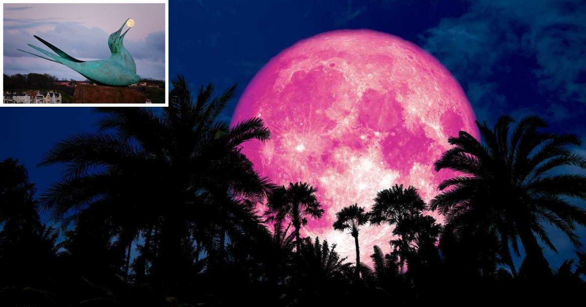 s1 11.png?resize=1200,630 - Rare Pink Moon Phenomenon On Good Friday
