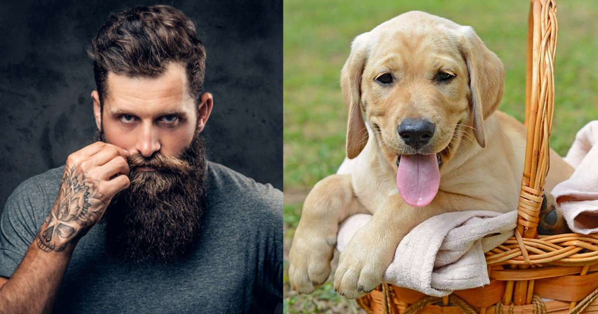 s1 9.png?resize=1200,630 - A New Study Claims That Dogs Carry Less Germs Compared to Men Who Have Beards