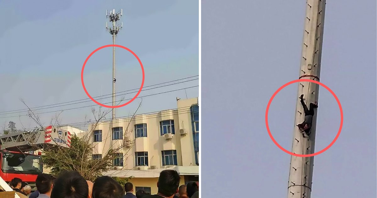 s4 6.png?resize=412,232 - Inebriated Man Climbed Up The Telephone Tower Until He Had to Be Rescued