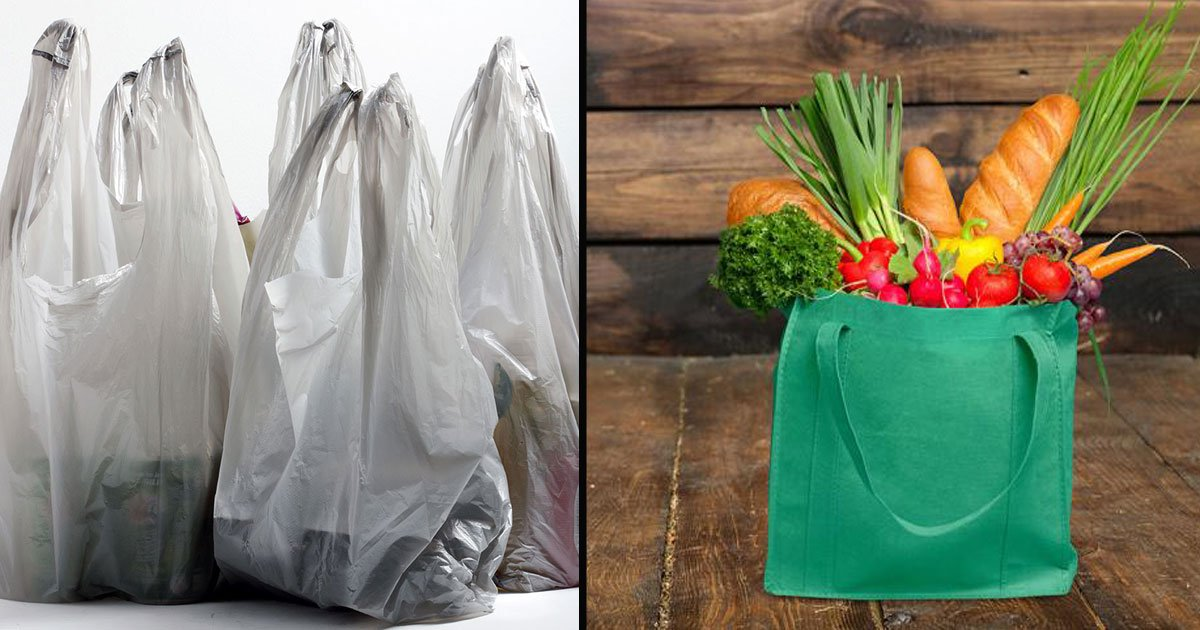 untitled 1 42.jpg?resize=1200,630 - Banning Plastic Bags Might Not Be The Best Environmental Choice After All