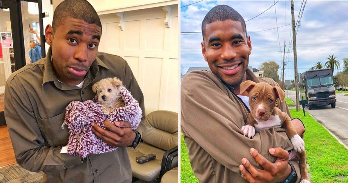 untitled 3 1.jpg?resize=412,232 - Un chauffeur d'UPS a partagé des photos adorables des chiens qu'il rencontre sur son chemin