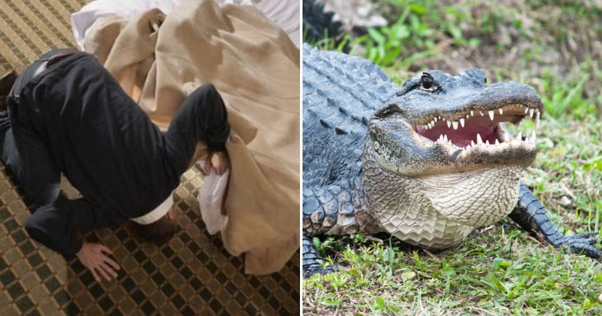 untitled design 68.png?resize=1200,630 - Farmer Woke Up And Discovered Giant Crocodile Resting Under His Bed