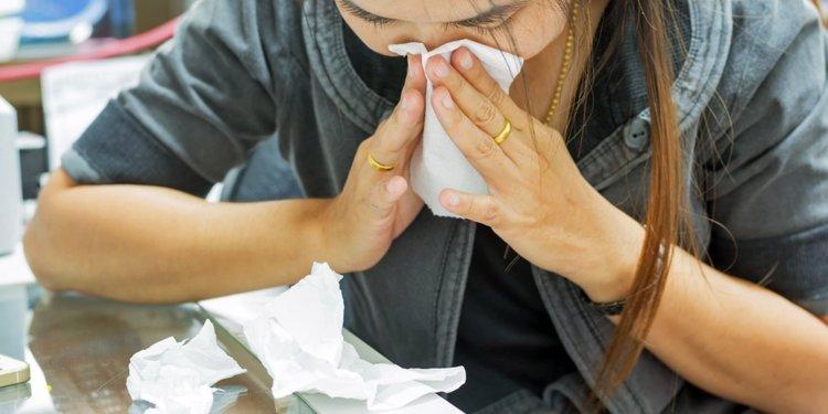 Image result for flu season 750