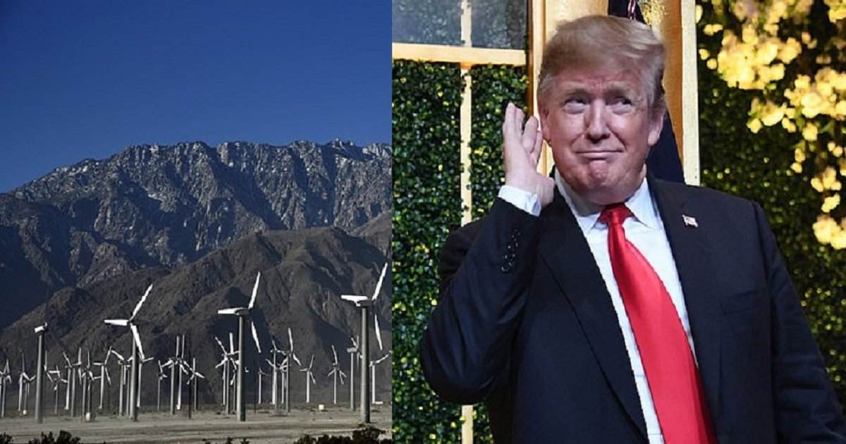 w3 2.jpg?resize=1200,630 - Trump: 'The Noise Generated By Windmills Cause Cancer'