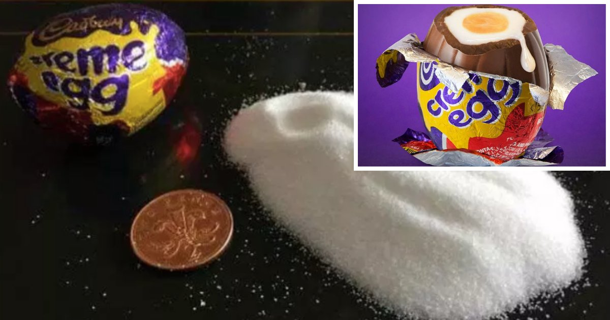 y1 10.png?resize=1200,630 - The Amount of Sugar One Creme Egg Contains Will Shock You