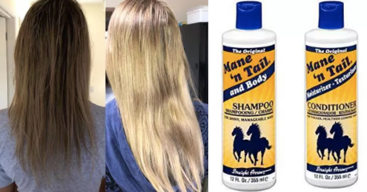 y2 12.png?resize=412,275 - Horse Shampoo Promises Hair Regrowth And Has More Than 1000 Reviews On Amazon