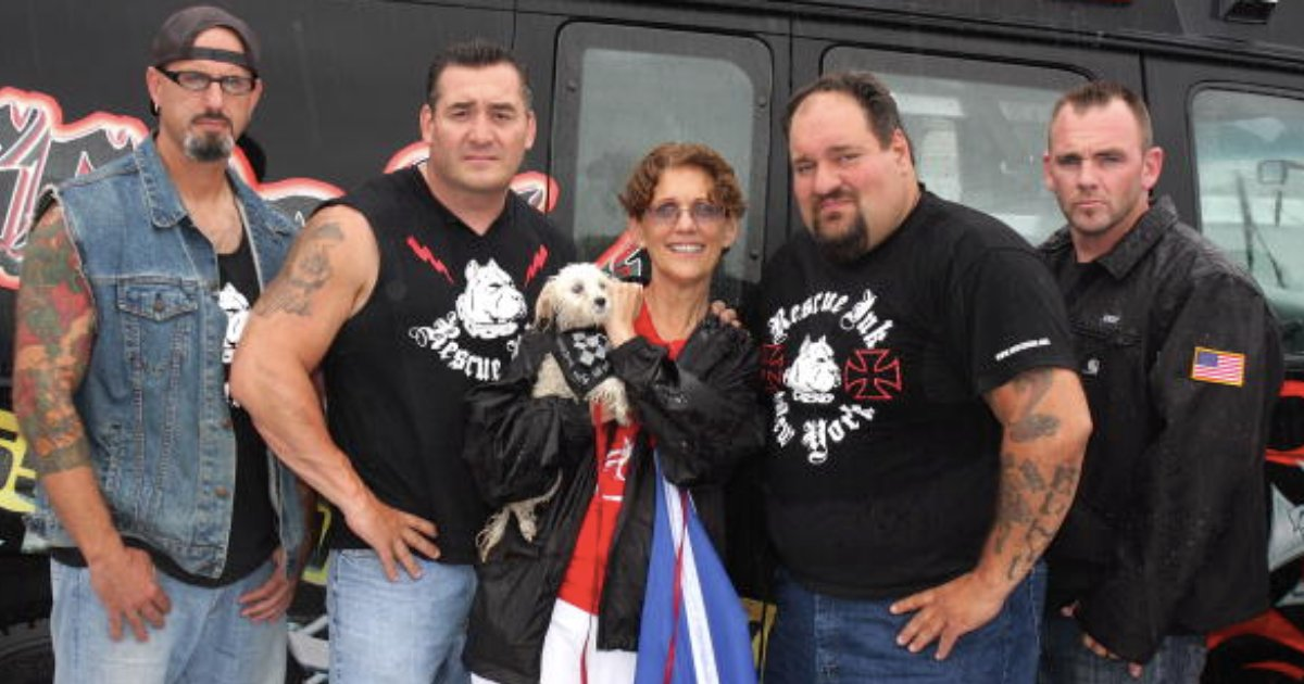 y4 6.png?resize=1200,630 - Here Is the Group of Bikers That Saves Animals From Their Cruel Owners