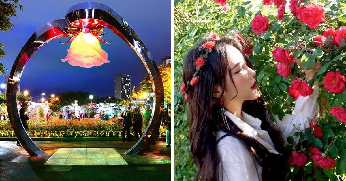 10 44.jpg?resize=412,232 - '로맨틱 끝판왕'... 다음주 서울에서 열린다는 '장미' 축제.jpg