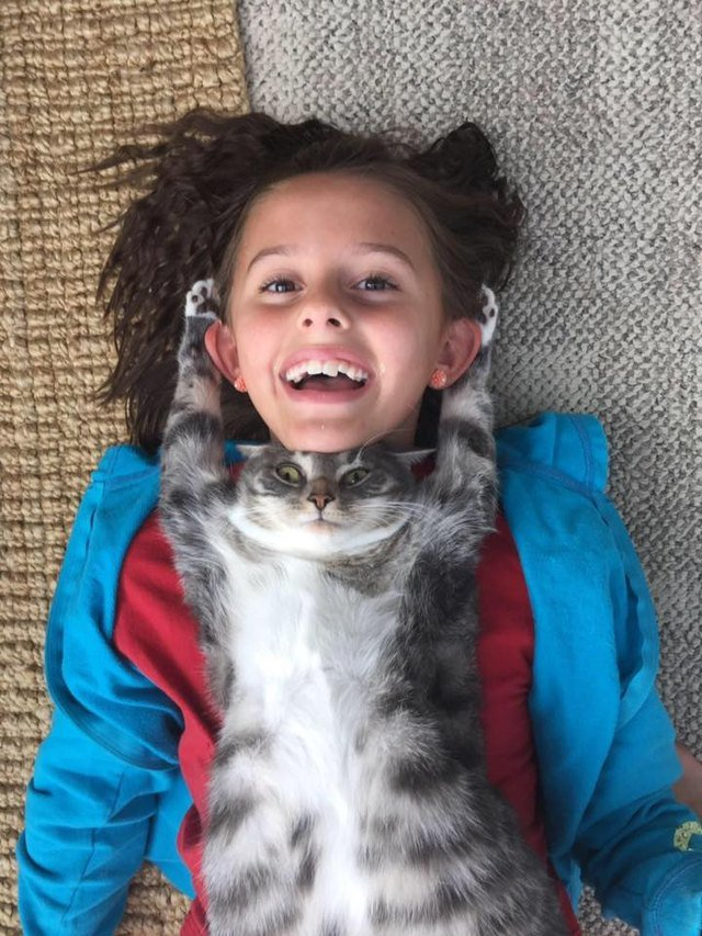Cat snuggles with child