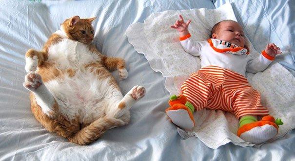 crianças-com-gatos-3