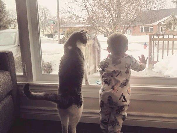 crianças-com-gatos-6