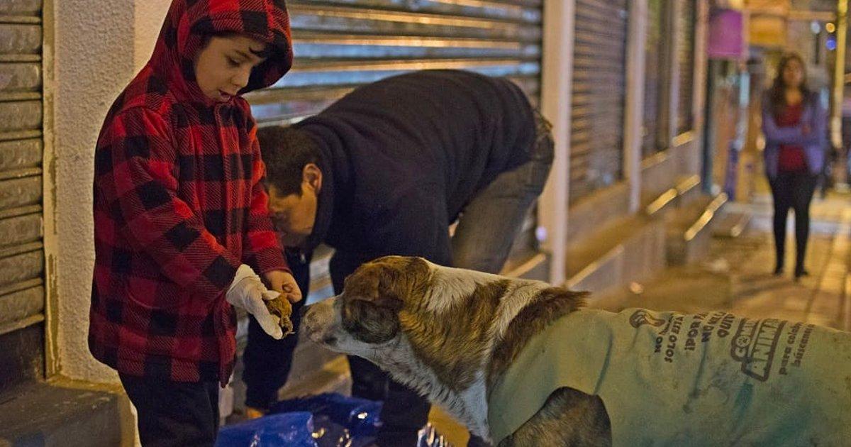 3 173.jpg?resize=412,232 - Un ingeniero boliviano renunció a su prometedora carrera por su pasión, dar de comer a los perros callejeros
